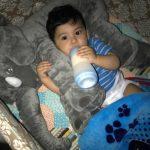 Adorable Elephant Plush Toy Big Size Pillow photo review