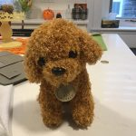 Simulation Poodle Dog Plush Stuffed Curly Hair Toy photo review