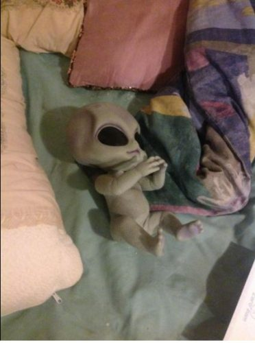 14 Inch Silicone Alien Baby Doll Realistic Hand-Detailed Painting photo review