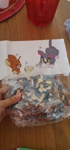 Tom and Jerry Series Cartoon Animal Model Small Building Blocks 800PCS photo review