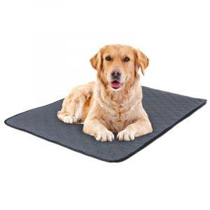 Pet Pee Pad Waterproof Urine Absorbent Cushion Mat Training Pad