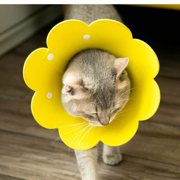 Sunflower Cat Elizabethan Neck Protective Collar Anti Bite