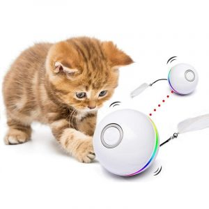 Cat Self Rotating Colorful Led Ball USB Rechargeable Toy