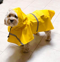 Pets Dog Hooded Raincoats Reflective Waterproof Jacket photo review