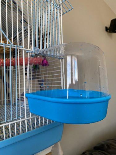 Bird Bathtub Bath Box Transparent Plastic Hanging Cleaning Tool photo review