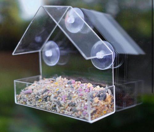 Bird Acrylic Feeder Transparent Window Viewing Birdhouse photo review