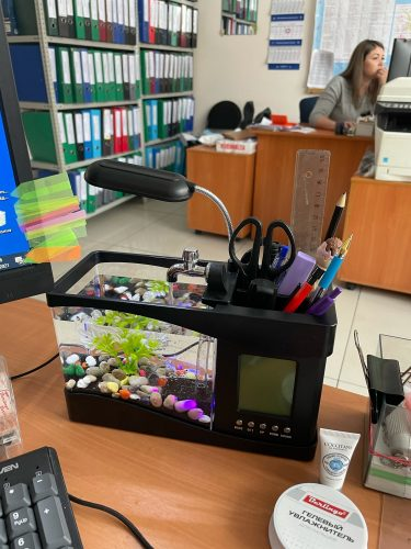 Fish Mini Aquarium Tank LED Light LCD Display Screen Clock photo review