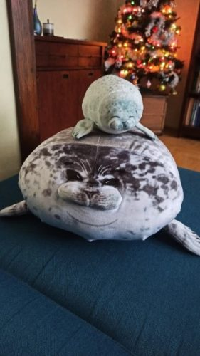Angry Blob Seal Plush Stuffed Pillow Chubby 3D Sea Lion Doll photo review