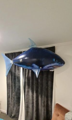 Flying Shark Toy Air Swimming Remote Control photo review