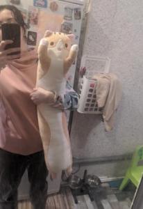Soft Cute Plush Long Cat Pillow Cotton Sleeping Pillow Toy photo review